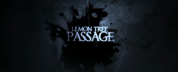 Последний поворот Lemon Tree Passage